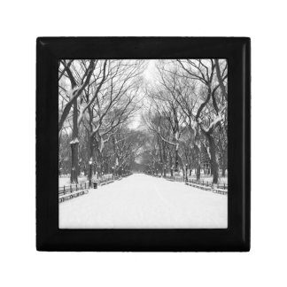 Central Park NYC in Winter - Jewelry Box