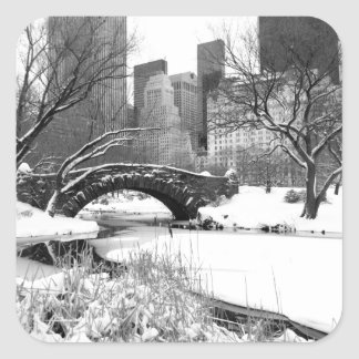 Central Park NYC in Winter - Sticker