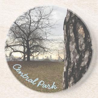 Central Park Reservoir New York City Sunrise NYC Coaster