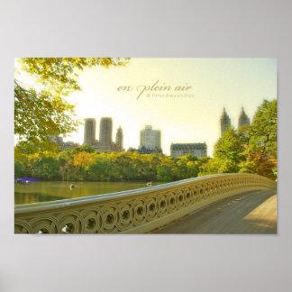 Central Park Romance Poster
