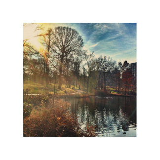 Central Park Sunshine Wood Prints