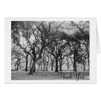 Central Park Thank You Card