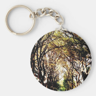 Central Park Trees at the Mall Keychain