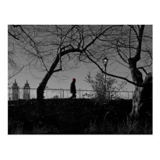 Central Park Walker Postcard