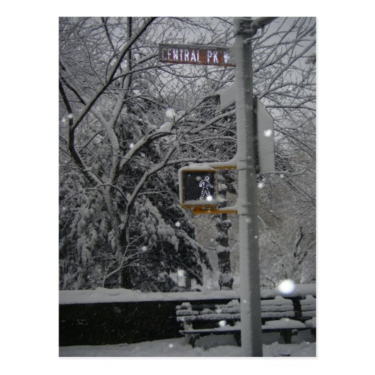 Central Park West New York City Snow NYC Postcard