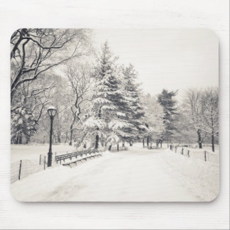 Central Park Winter Path - New York City Mouse Pad