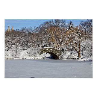 Central Park Winter Time Poster