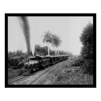 Central Railroad in Guatemala 1920 Poster