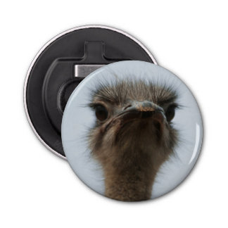 Central South Africa, African Ostrich, Close-up Bottle Opener