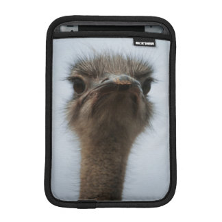Central South Africa, African Ostrich, Close-up Sleeve For iPad Mini