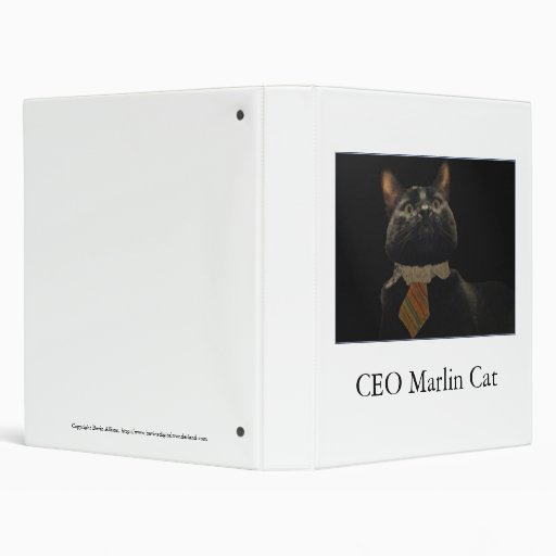 CEO Marlin Cat Binders