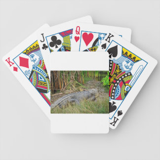 CEOCODILE QUEENSLAND AUSTRALIA BICYCLE PLAYING CARDS