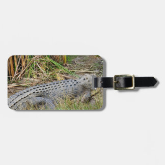 CEOCODILE QUEENSLAND AUSTRALIA LUGGAGE TAG