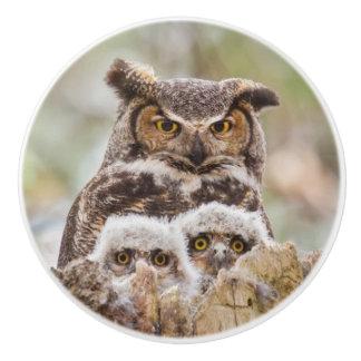 Ceramic Door Pulls with Owls