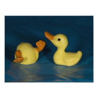 Ceramic Duck Photographic Print