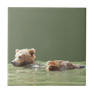 Ceramic Tile of grizzly bear and cub