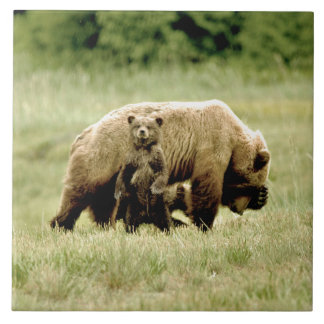Ceramic Tile of grizzly bear and cubs