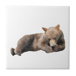 Ceramic Tile of grizzly bear cub