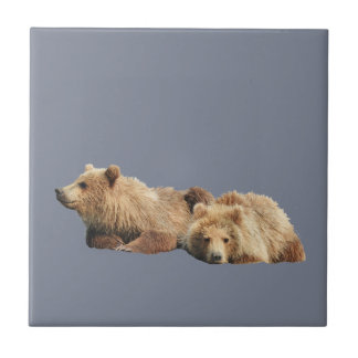 Ceramic Tile of grizzly bear cubs