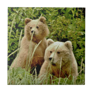 Ceramic Tile w/ grizzly bear and cub