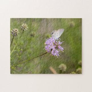Ceraunus Blue Butterfly Nectars on a Purple Flower Puzzle