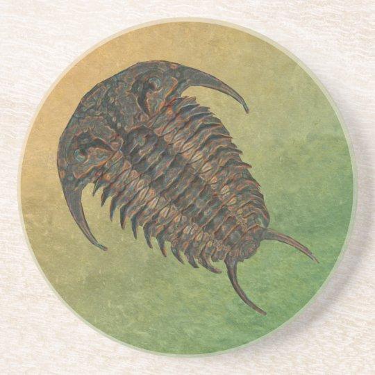 Ceraurus Fossil Trilobite Coaster