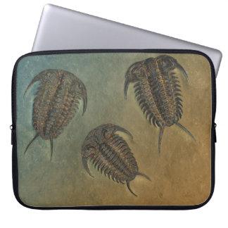 Ceraurus Fossil Trilobite Laptop Sleeve