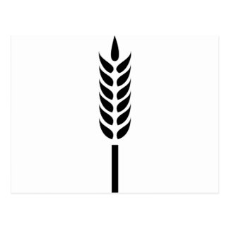 cereal wheat spike postcard