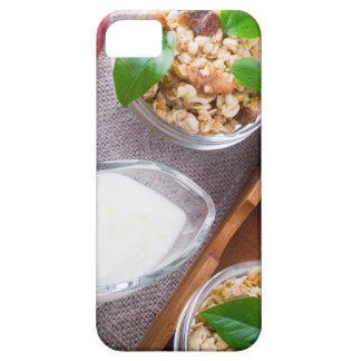 Cereal with walnuts and raisins, yogurt and apples iPhone 5 cover
