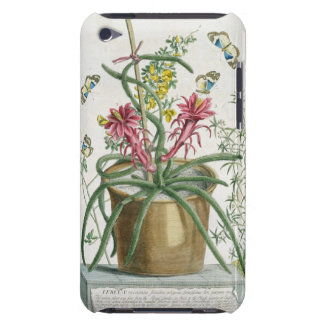 Cereus Minimus c 1745 coloured litho Barely There iPod Cases