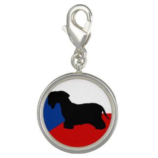 cesky terrier silo czech-republic flag photo charm