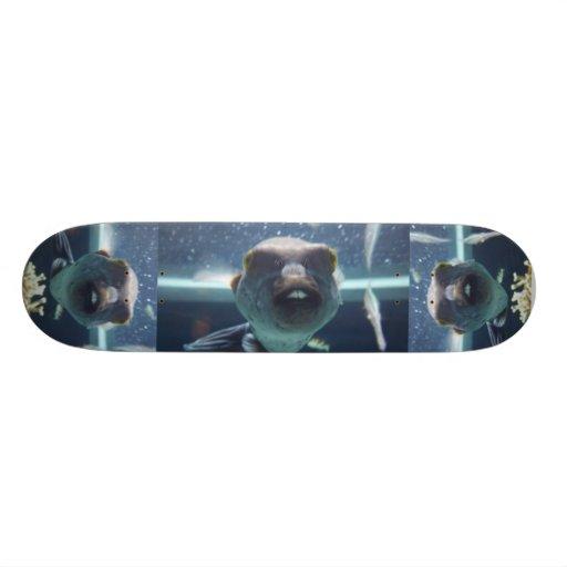 Cette planche à roulettes de poissons de Bucktooth Skateboard Old School 21,6 Cm