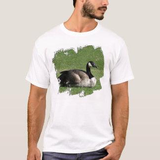 CGR Canada Goose Resting T-Shirt