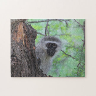 Chacma Baboon Jigsaw Puzzle