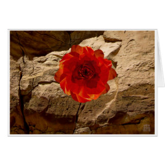 Chaco Stone Rose Card