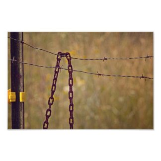 Chain on fence art photo