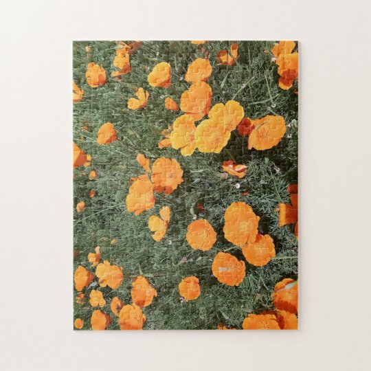 Challenging California Poppy Puzzle