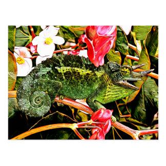 Chameleon Charisma Postcard