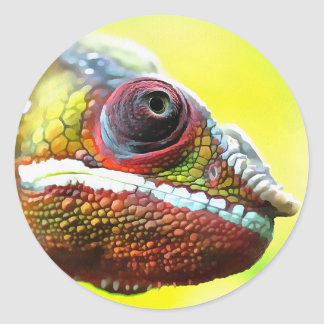 Chameleon Face Classic Round Sticker