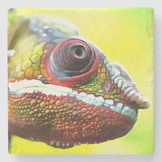 Chameleon Face Stone Coaster