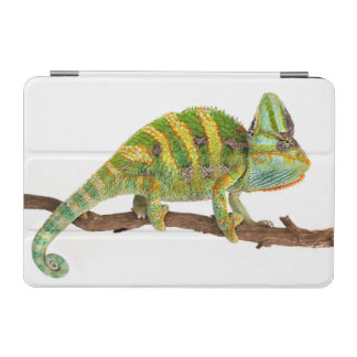 Chameleon iPad Mini Cover