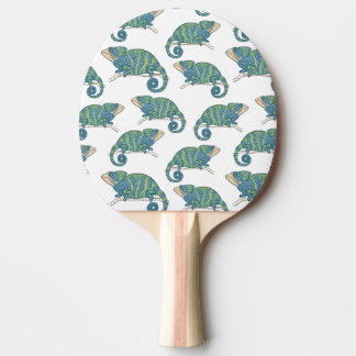 Chameleon Pattern Ping-Pong Paddle