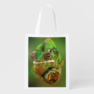 Chameleon Photo Grocery Bags
