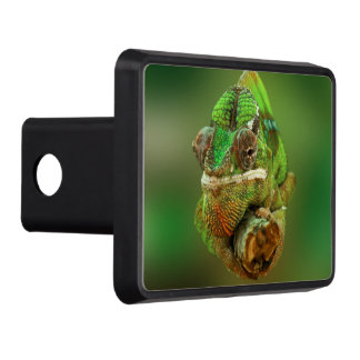 Chameleon Photo Hitch Cover