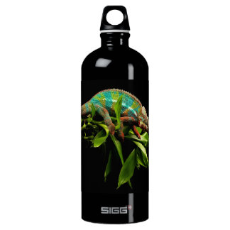 Chameleon Water Bottle
