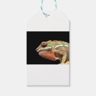 Chamelion Gift Tags