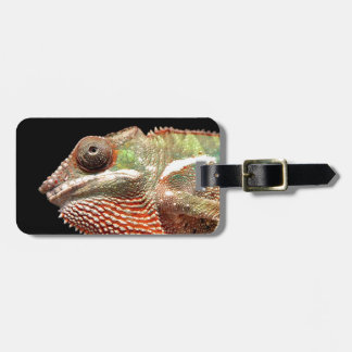 Chamelion Luggage Tag
