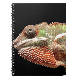 Chamelion Notebooks