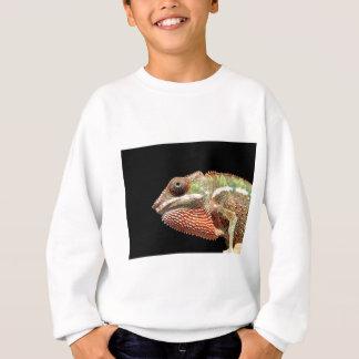 Chamelion Sweatshirt