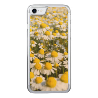 Chamomile Field, Hungary Carved iPhone 8/7 Case